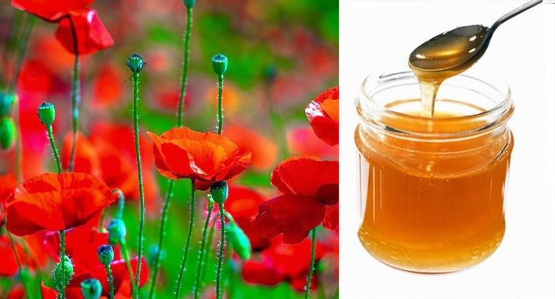 mật ong từ cây hoa anh túc có gây nghiện không